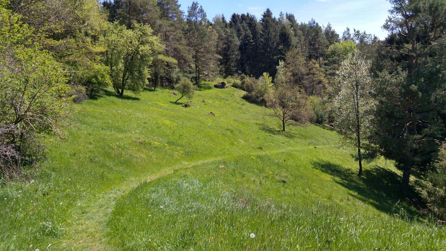 Mountainbike-Touren in Oberfranken