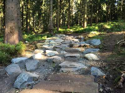 Mountain Bike Trails in the Harz Mountains