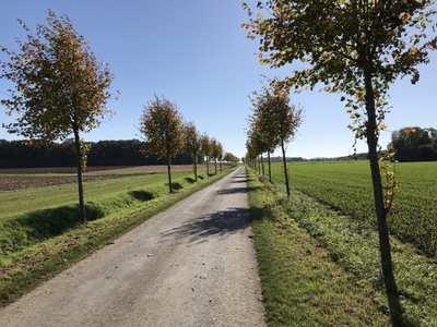 Mountainbike-Touren in Hamm