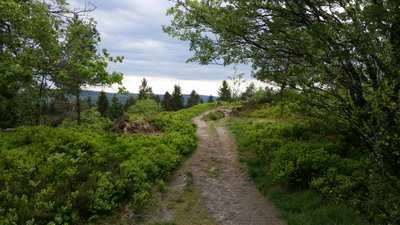 Mountainbike-Touren im Teutoburger Wald