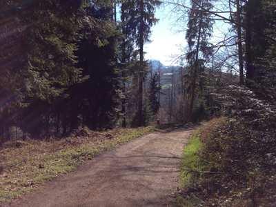 Mountainbike-Touren rund um Luzern