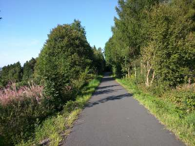 Rennradtouren im Thüringer Wald