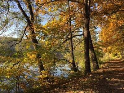 Wandern im Seenland Oder-Spree