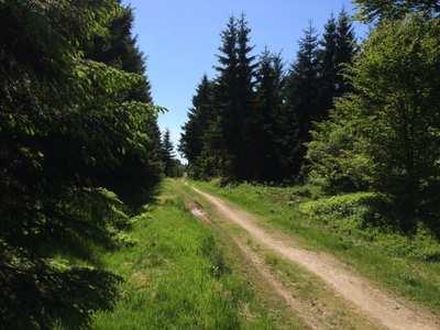 Mountainbike-Touren in Siegerland-Wittgenstein