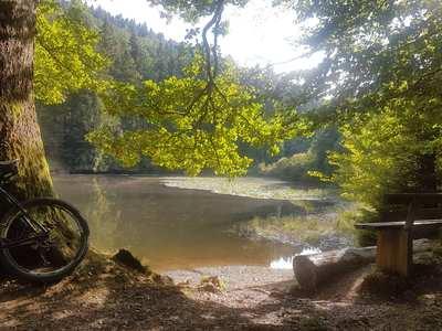 Radtouren in Siegerland-Wittgenstein