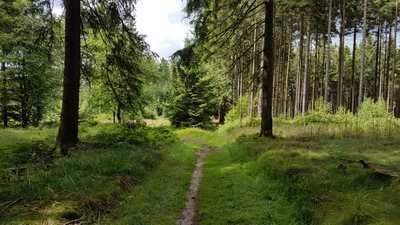 Mountainbike-Touren rund um Höxter