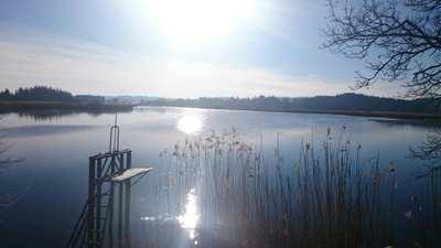 Radtouren rund um den Starnberger See