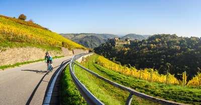 Rennradtouren am Romantischen Rhein