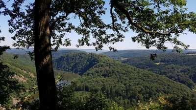 Wandern in Merzig-Wadern
