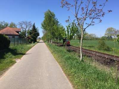 Rennradtouren in der Kurpfalz