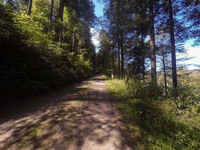 Mountainbike-Touren rund um Waldshut