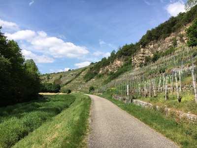 Radtouren im Enzkreis