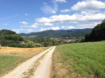 Mountainbike-Touren im Hochschwarzwald