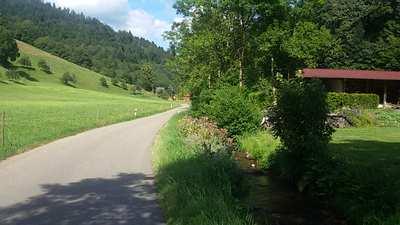Radtouren im Hochschwarzwald