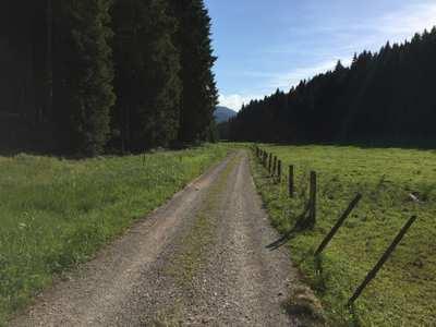 Mountainbike-Touren im Pfaffenwinkel