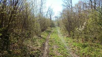 Mountainbike-Touren rund um Bad Kissingen