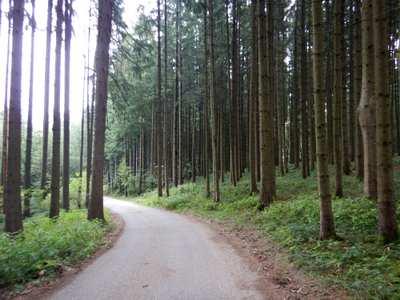 Rennradtouren in Erding