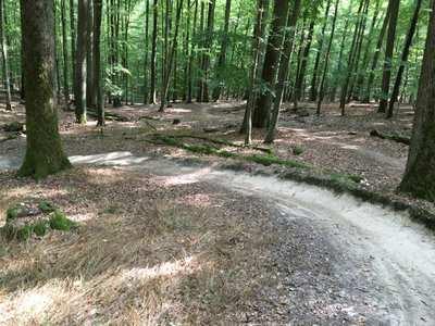 Mountainbike-Touren rund um Schweinfurt