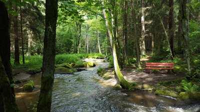 Wandern rund um Weiden in der Oberpfalz