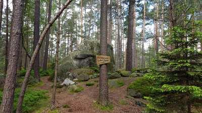 Mountainbike-Touren rund um Weiden in der Oberpfalz