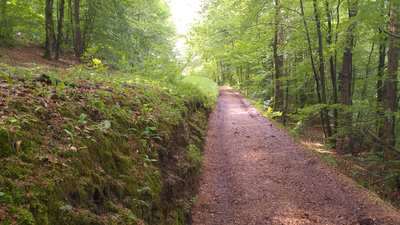 Mountainbike-Touren in Amberg