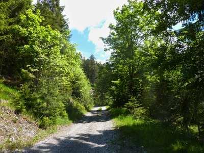 Mountainbike-Touren in der Naturparkregion Reutte