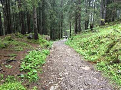 Mountainbike-Touren im Tannheimer Tal