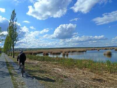Mountainbike-Touren rund um den Neusiedler See