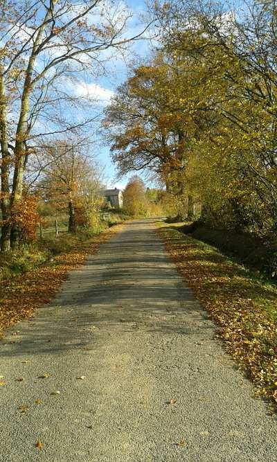 Rennradtouren in den Ardennen