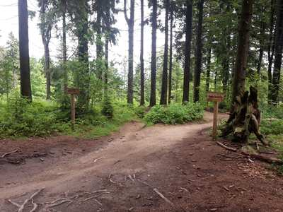 Mountainbike-Touren in Niederbayern