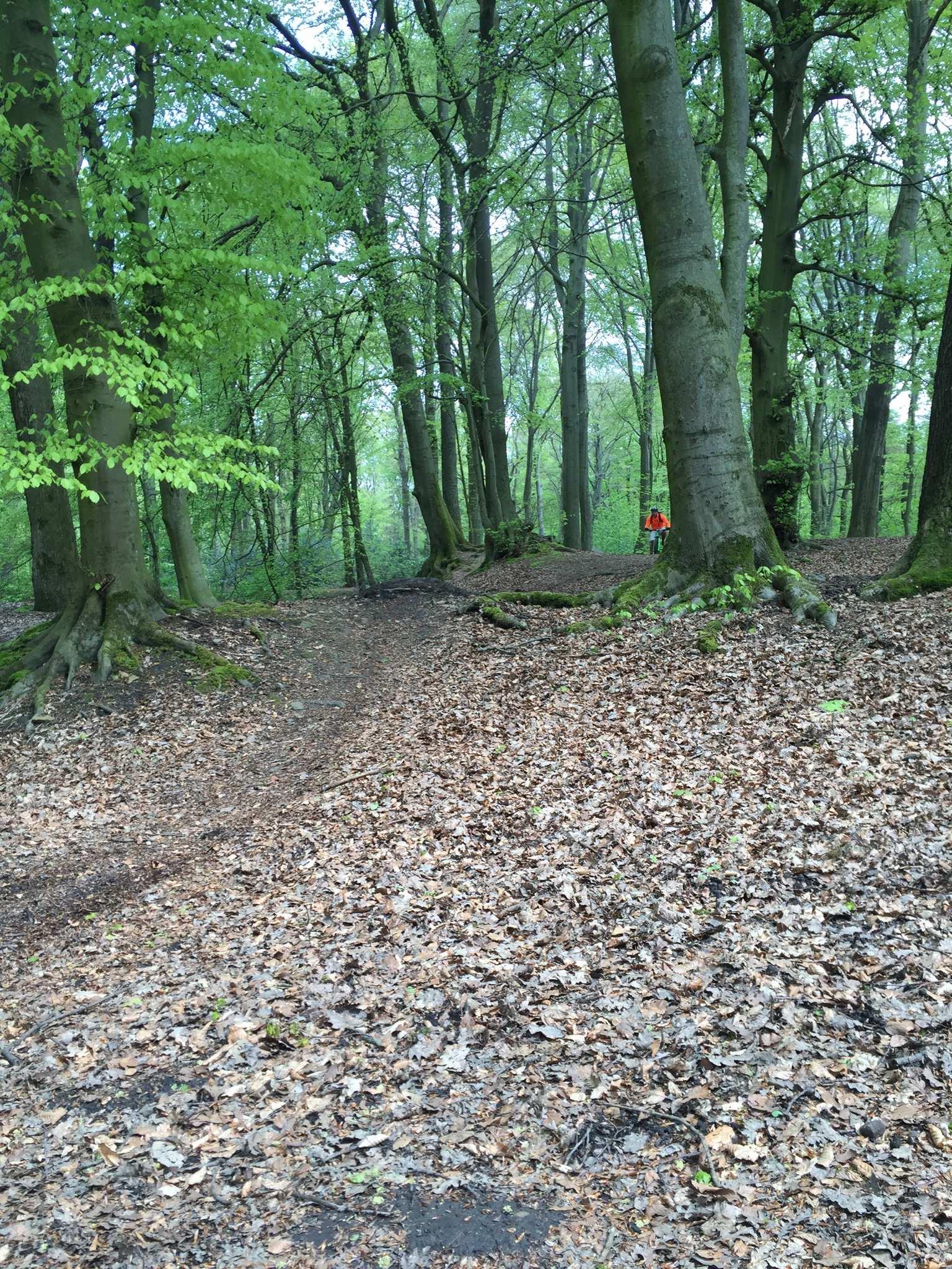 Mountainbike-Touren im Ruhrgebiet