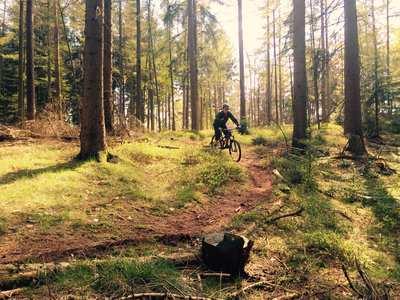 Mountainbike-Touren in Rosengarten