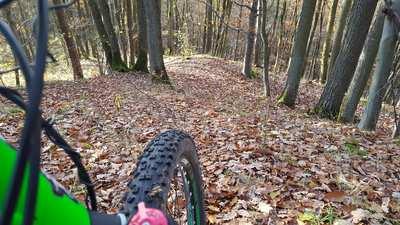 Mountainbike-Touren im Steigerwald