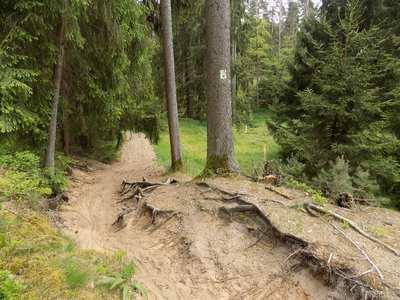 Mountainbike-Touren in Franken