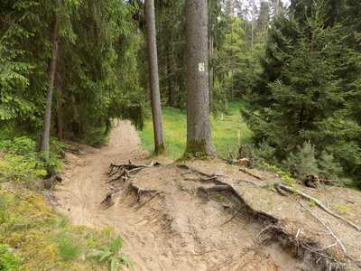 Mountainbike-Touren in Franken