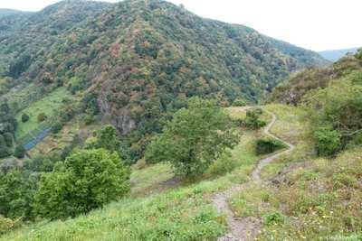 Mountainbike-Touren im Ahrgebirge