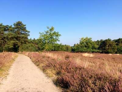 Wandern in Buxtehude