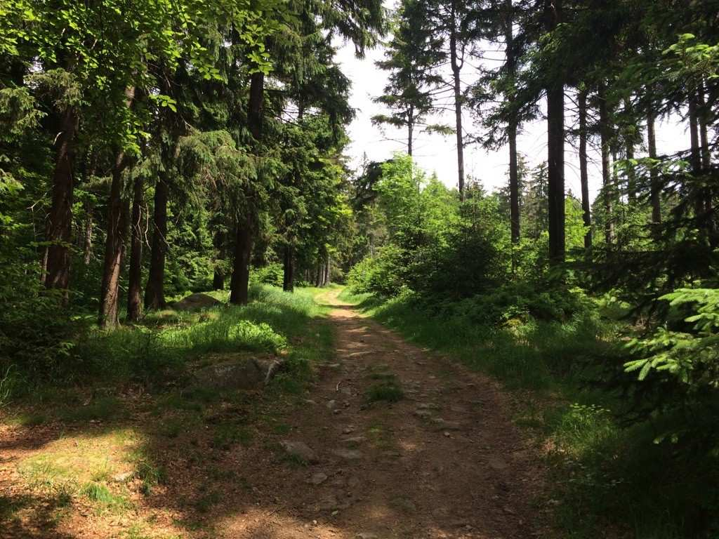 Mountainbike-Touren im Fichtelgebirge