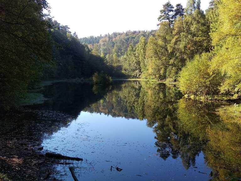 Top 20 Most Beautiful Hikes around Freinsheim | Komoot