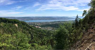Wandern rund um Zürich
