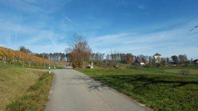 Rennradtouren rund um Zürich