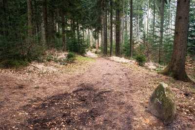 Wandern in Harburg