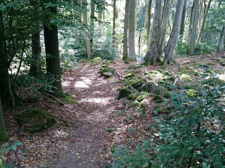 Mountainbike-Touren in Bayern