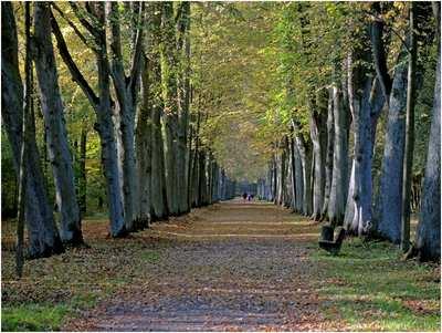 MTB Trails Around Bremen