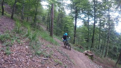 Mountainbike-Touren im Schwarzwald