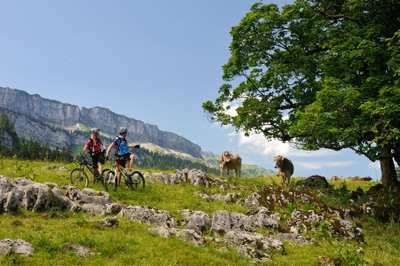 Mountainbike-Touren im Allgäu