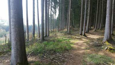 Mountain Bike Trails around Augsburg