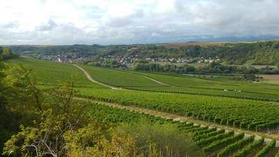 Radtouren rund um Würzburg