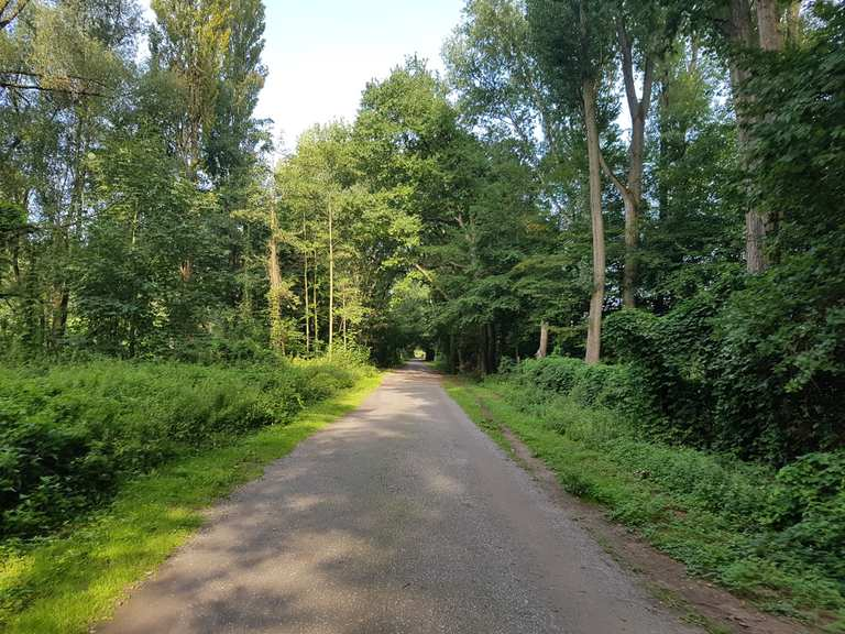 Top 20 Bike Rides And Cycling Routes Around Mettmann Komoot