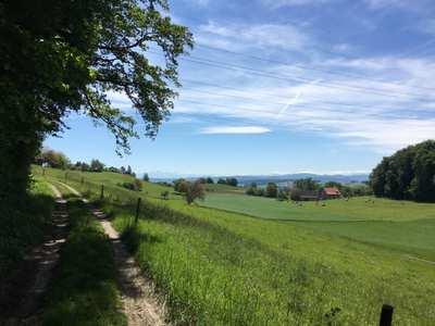 Mountain Bike Trails in the Thurgau